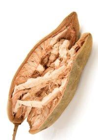 PRODUCT organic baobab oil - DALÚ natural skincare